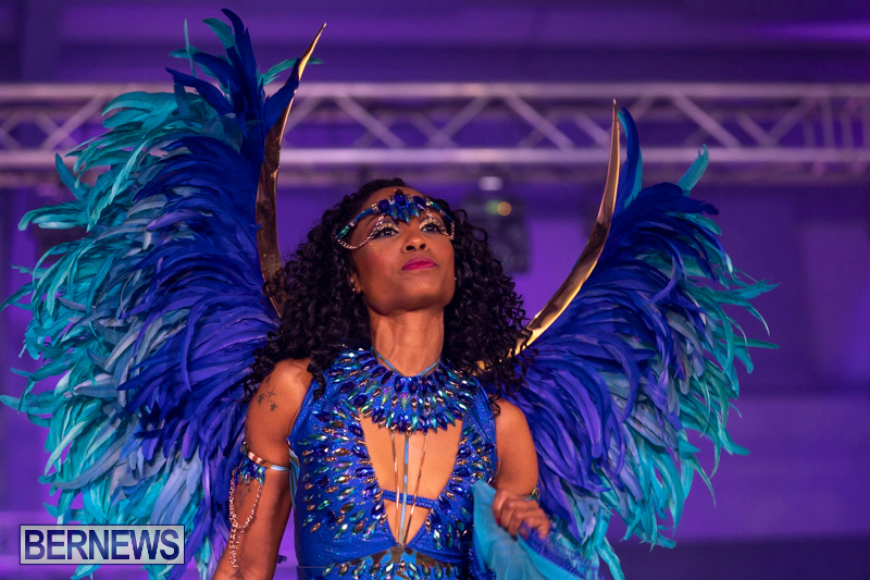 Bermuda-Heroes-Weekend-BHW-Band-Launch-Party-People-January-20-2019-4288