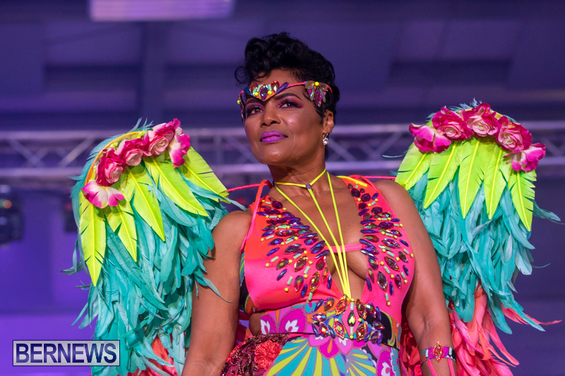 Bermuda-Heroes-Weekend-BHW-Band-Launch-Party-People-January-20-2019-4303