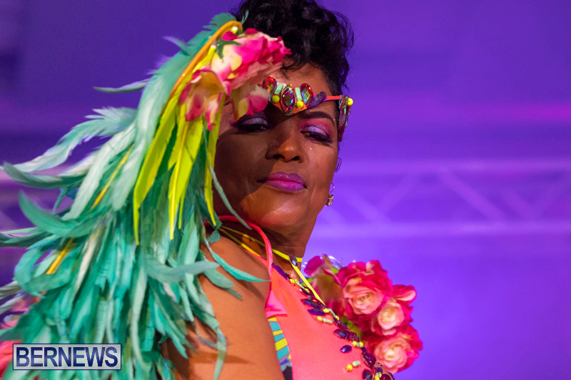 Bermuda-Heroes-Weekend-BHW-Band-Launch-Party-People-January-20-2019-4308