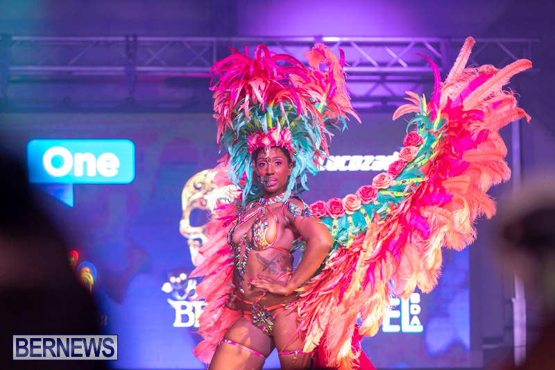 Bermuda-Heroes-Weekend-BHW-Band-Launch-Party-People-January-20-2019-4365