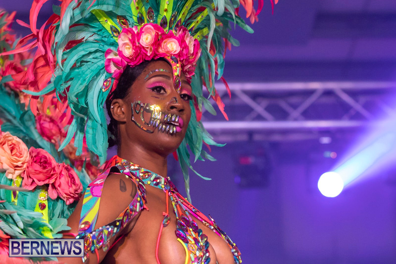 Bermuda-Heroes-Weekend-BHW-Band-Launch-Party-People-January-20-2019-4389