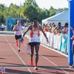 Bermuda Marathon Weekend 10K Bermuda, January 19 2019-0881