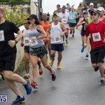 Butterfield & Vallis 5K road race Bermuda, January 27 2019-5899