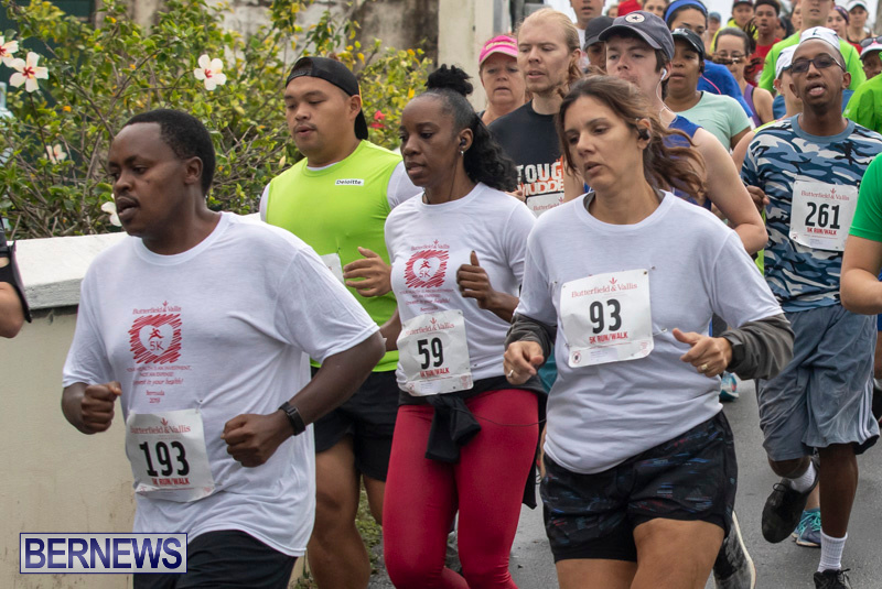 Butterfield-Vallis-5K-road-race-Bermuda-January-27-2019-5977