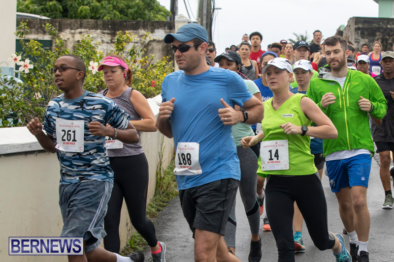 Butterfield-Vallis-5K-road-race-Bermuda-January-27-2019-5979