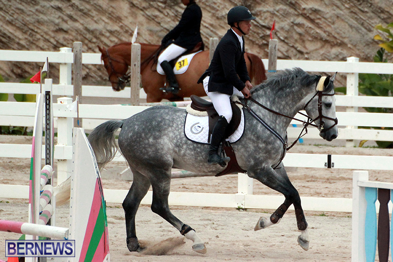 Equestrian-Bermuda-Jan-16-2019-1