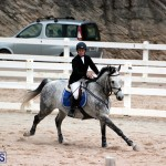 Equestrian Bermuda Jan 16 2019 (12)