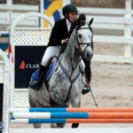 Equestrian Bermuda Jan 16 2019 (14)