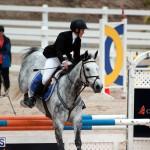 Equestrian Bermuda Jan 16 2019 (15)
