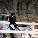 Equestrian Bermuda Jan 16 2019 (17)