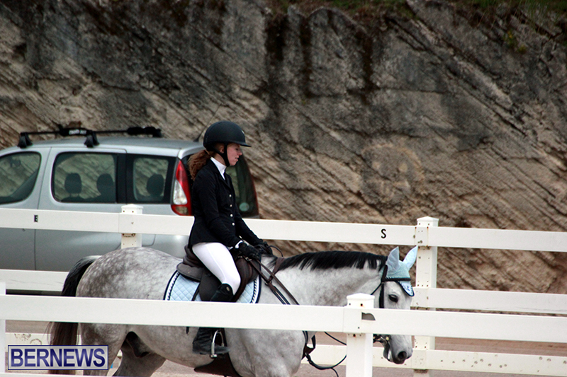 Equestrian-Bermuda-Jan-16-2019-17