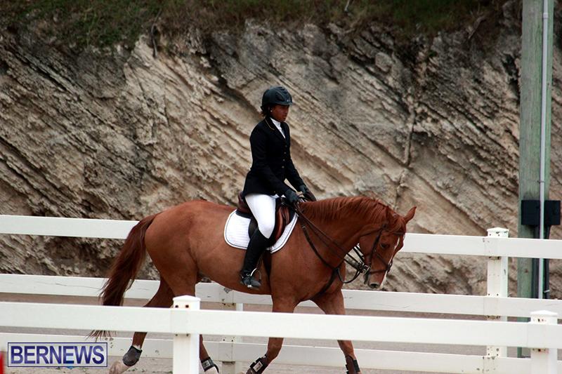 Equestrian-Bermuda-Jan-16-2019-18
