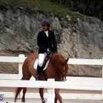Equestrian Bermuda Jan 16 2019 (19)