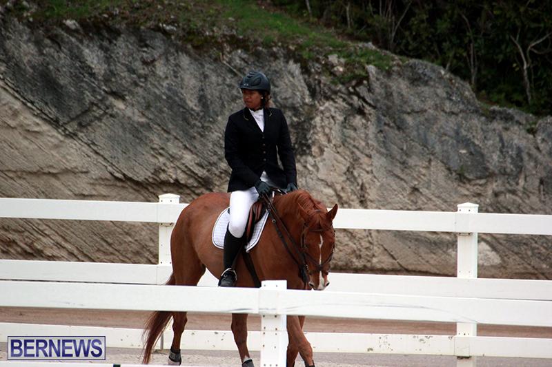 Equestrian-Bermuda-Jan-16-2019-19