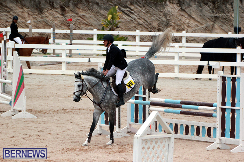 Equestrian-Bermuda-Jan-16-2019-8