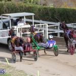 Harness Pony Racing Bermuda, January 1 2019-6599