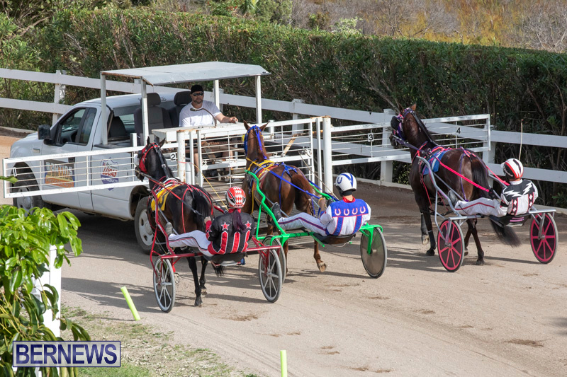 Harness-Pony-Racing-Bermuda-January-1-2019-6599