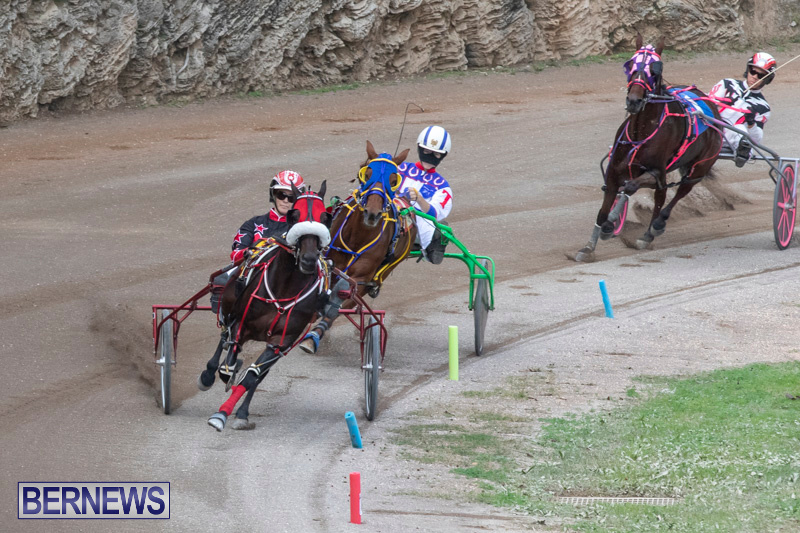 Harness-Pony-Racing-Bermuda-January-1-2019-6603