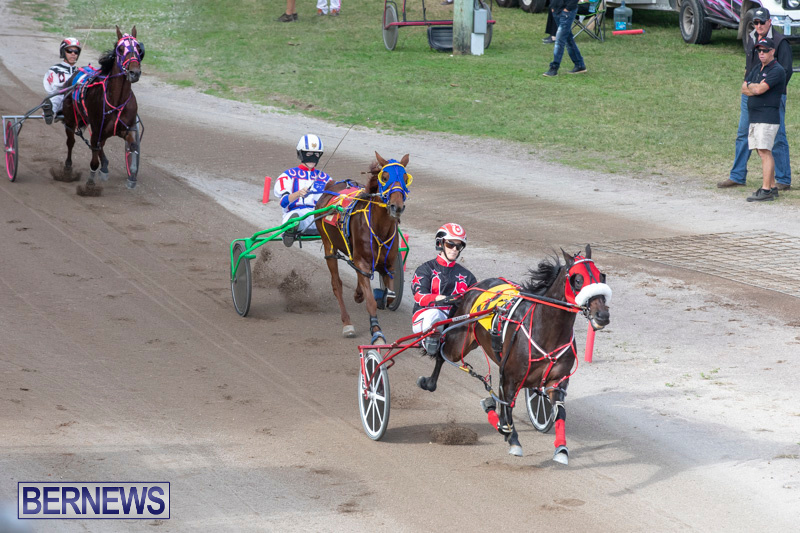 Harness-Pony-Racing-Bermuda-January-1-2019-6607