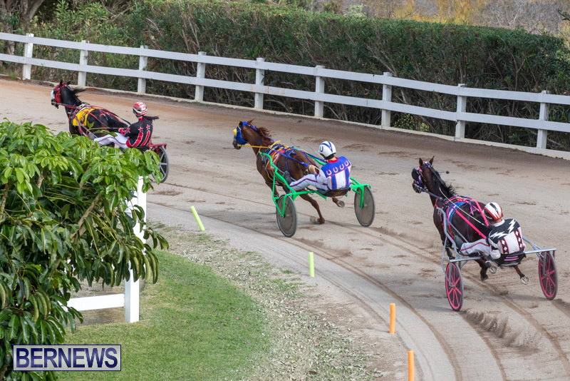 Harness-Pony-Racing-Bermuda-January-1-2019-6613