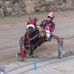 Harness Pony Racing Bermuda, January 1 2019-6615
