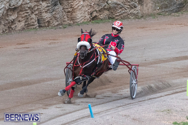 Harness-Pony-Racing-Bermuda-January-1-2019-6615