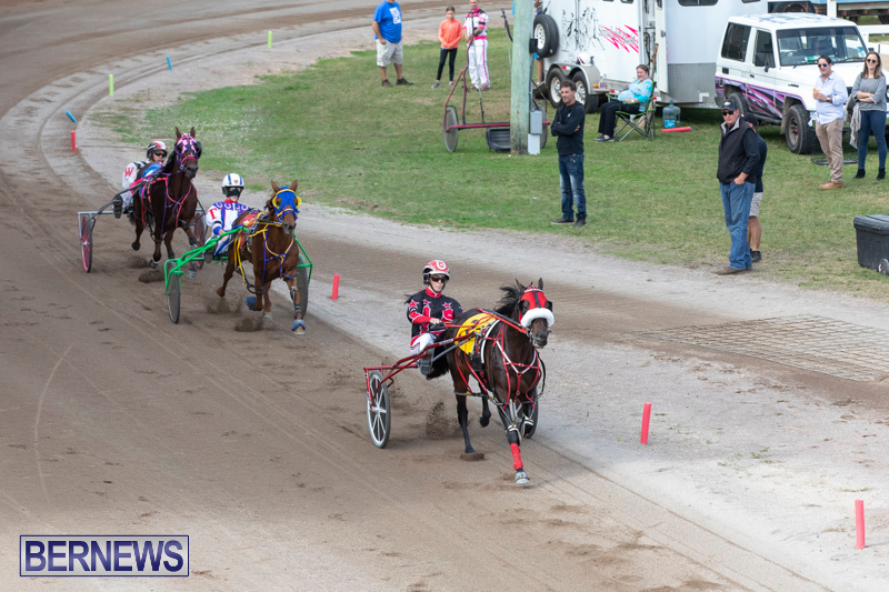 Harness-Pony-Racing-Bermuda-January-1-2019-6621
