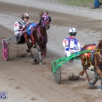 Harness Pony Racing Bermuda, January 1 2019-6623