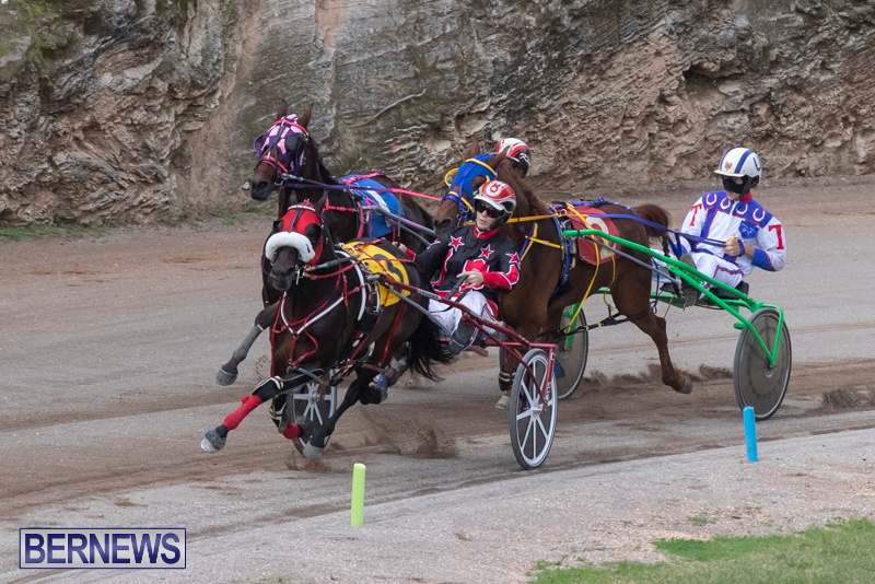 Harness-Pony-Racing-Bermuda-January-1-2019-6629