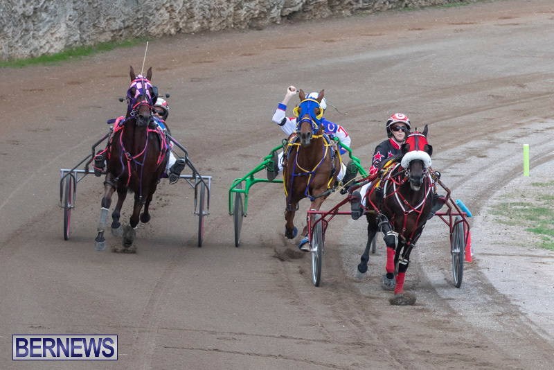 Harness-Pony-Racing-Bermuda-January-1-2019-6634