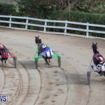 Harness Pony Racing Bermuda, January 1 2019-6647
