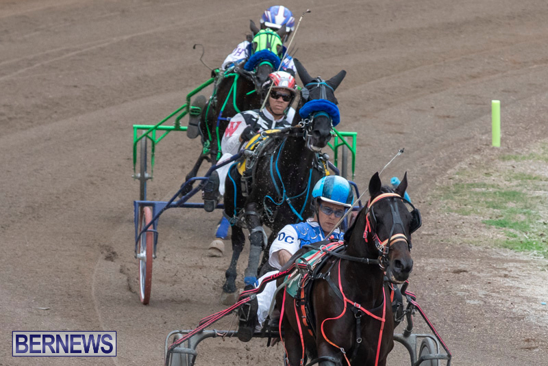 Harness-Pony-Racing-Bermuda-January-1-2019-6696