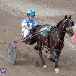 Harness Pony Racing Bermuda, January 1 2019-6700