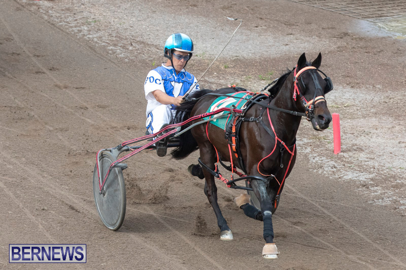 Harness-Pony-Racing-Bermuda-January-1-2019-6700