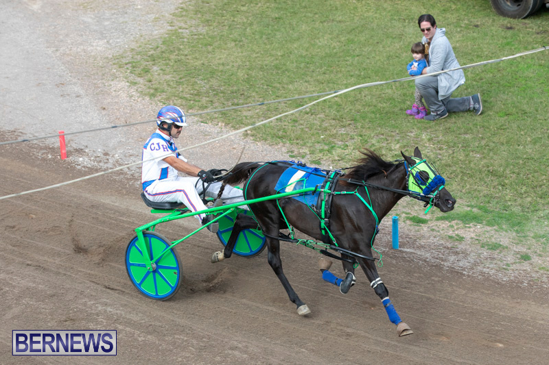 Harness-Pony-Racing-Bermuda-January-1-2019-6708