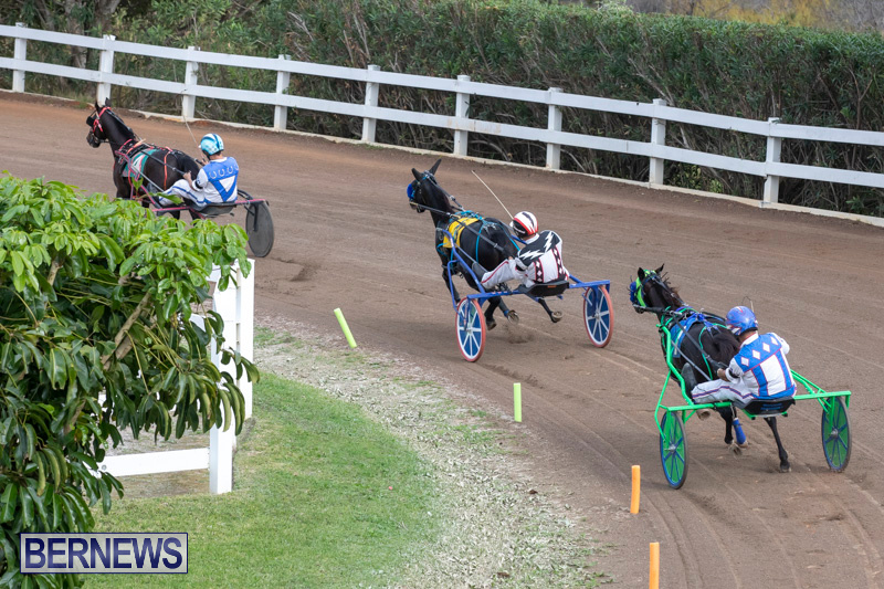 Harness-Pony-Racing-Bermuda-January-1-2019-6710