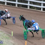 Harness Pony Racing Bermuda, January 1 2019-6711