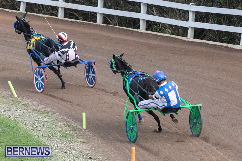 Harness-Pony-Racing-Bermuda-January-1-2019-6711