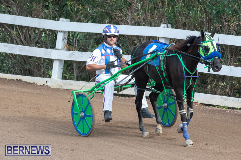 Harness-Pony-Racing-Bermuda-January-1-2019-6773