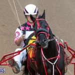 Harness Pony Racing Bermuda, January 1 2019-6793