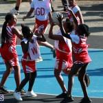 Netball Bermuda Jan 23 2019 (11)