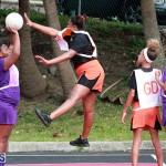 Netball Bermuda Jan 9 2019 (13)