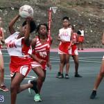 Netball Bermuda Jan 9 2019 (16)