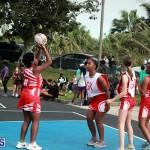 Netball Bermuda Jan 9 2019 (9)
