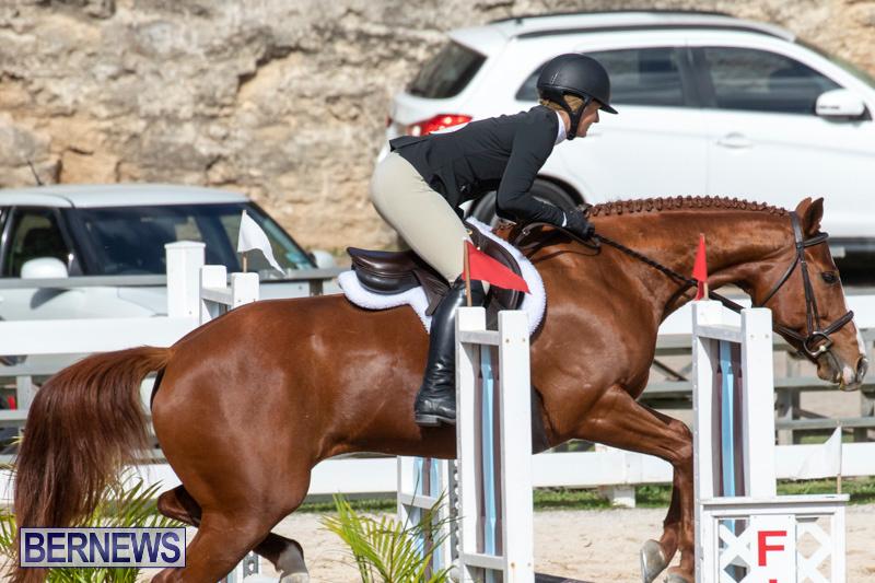 RES-Hunter-Jumper-Show-Series-1-Bermuda-January-20-2019-3567