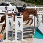 RES Hunter Jumper Show Series 1 Bermuda, January 20 2019-3583