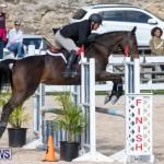 RES Hunter Jumper Show Series 1 Bermuda, January 20 2019-3636