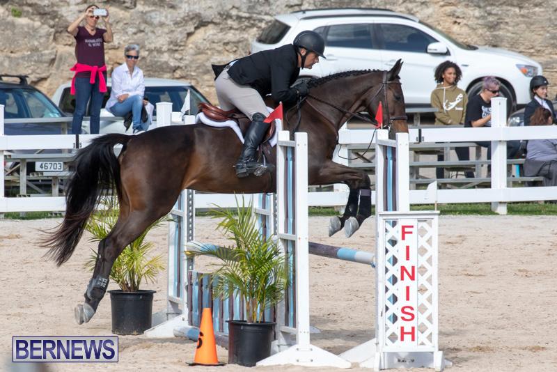 RES-Hunter-Jumper-Show-Series-1-Bermuda-January-20-2019-3636