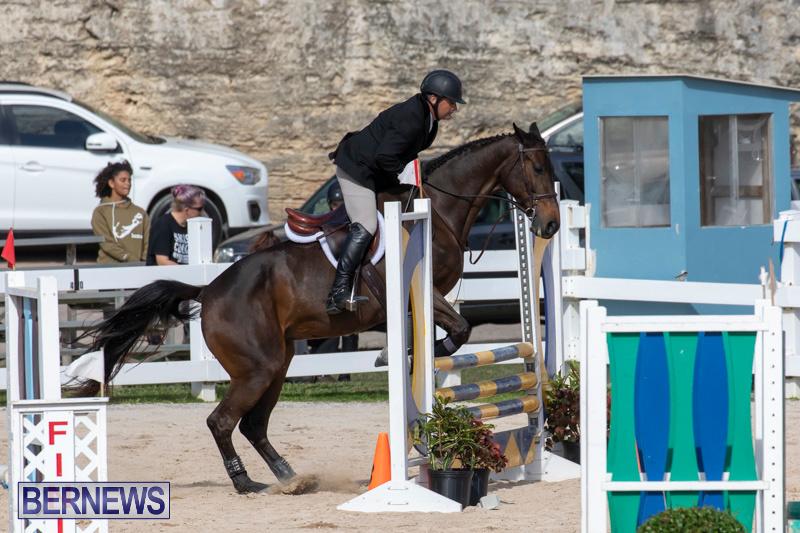 RES-Hunter-Jumper-Show-Series-1-Bermuda-January-20-2019-3643