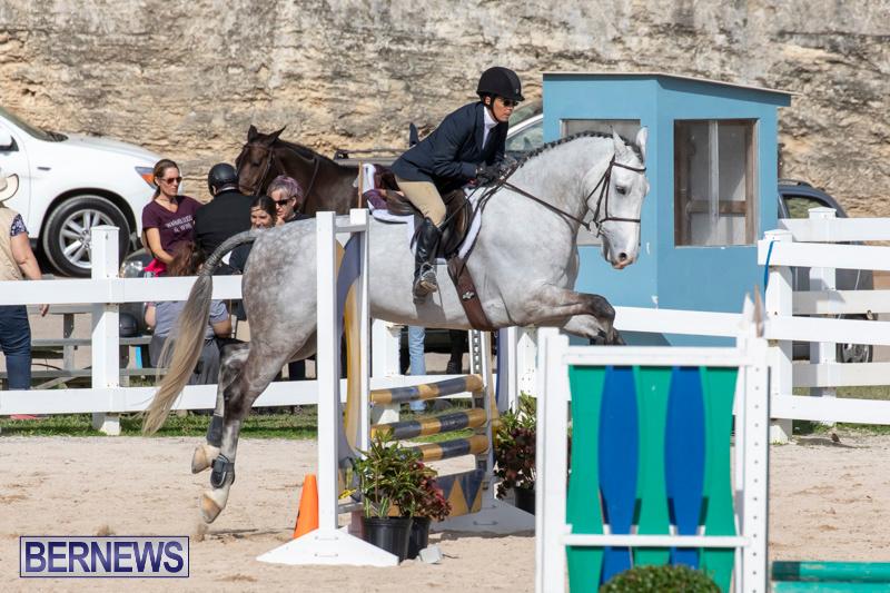 RES-Hunter-Jumper-Show-Series-1-Bermuda-January-20-2019-3670